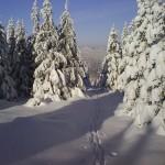 masyw śnieżnika 2