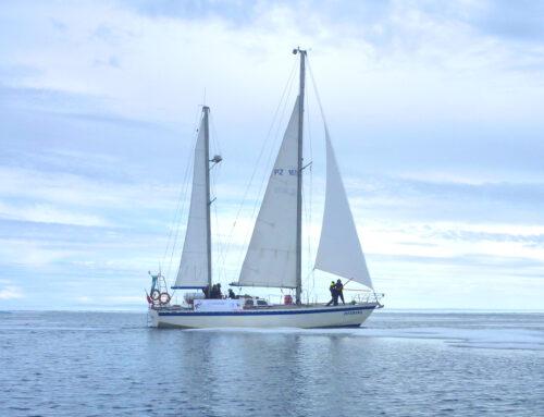 """Czwartek klubowy """"Svalbard 2011: Ostatnia wyprawa Panoramy"""""""