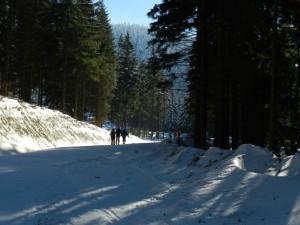 Wycieczka skiturowa  (13)